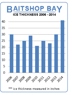 Record ice thickness at Petrie Island