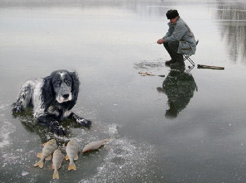Ice Fishing in Spring.